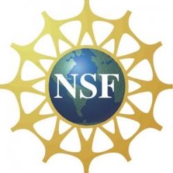 NSFlogo
